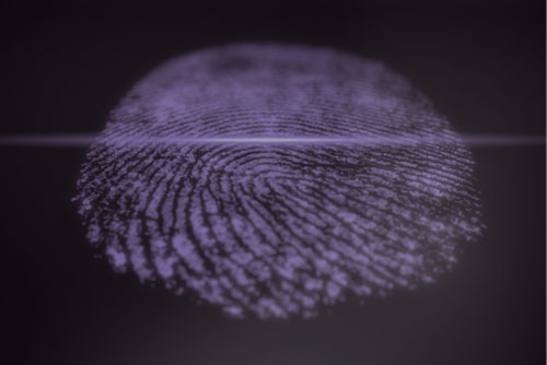 Why Digital Forensics Matter In Rapid Incident Response